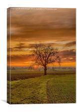 Swabian Sunset, Canvas Print