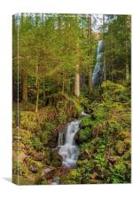 Burgbach Waterfall, Black Forest, Germany, Canvas Print