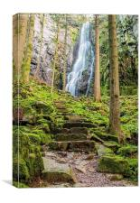 Burgbach Waterfall, Black Forest, Germany 2, Canvas Print