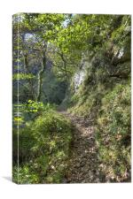 On The Path To Watersmeet, Canvas Print