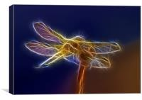 Electric Dragonfly, Canvas Print