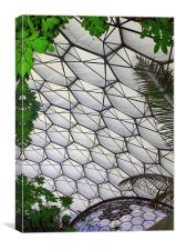 Eden Project Cornwall England, Canvas Print
