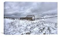 Winter 2013 on Exmoor, Canvas Print