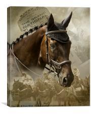 Race Horse Dreams, Canvas Print