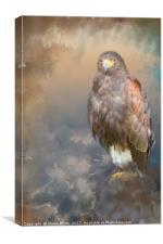 Raptor, Canvas Print
