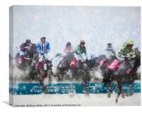 Winter Jumps, Canvas Print