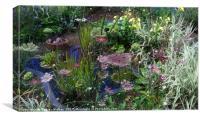 wildlife pond with ornamental plants, Canvas Print