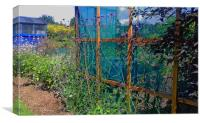 allotment border, Canvas Print