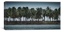 Palmtree road, Canvas Print