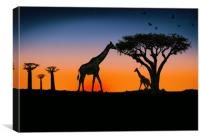 giraffes at sunset, Canvas Print