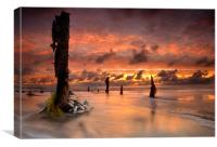 Flotsam at Dawn, Canvas Print