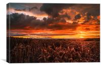 Red sky at night , Canvas Print