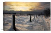Winter Sunrise, Canvas Print