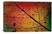 Leaf Skelton, Canvas Print