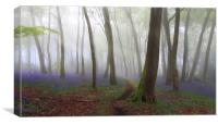 Bluebell Path in Misty Woodlands, Canvas Print