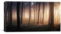 Misty Winter Woods, Canvas Print