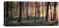 Golden Autumn Dawn, Canvas Print
