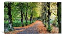 HAND IN HAND THROUGH THE AVENUE OF AUTUMN , Canvas Print