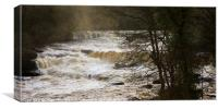 Aysgarth Upper Falls, Canvas Print