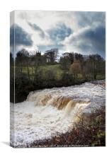 Aysgarth Lower Falls, Canvas Print