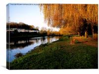 Autumn Sunlight , Canvas Print