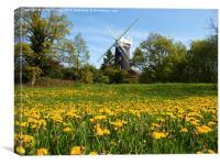 Wray Common Windmill, Canvas Print