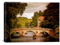 Punting on River Cam, Canvas Print