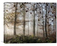 Misty Autumn, Canvas Print