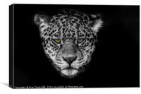 Jaguar Portrait, Canvas Print