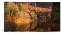 Autumn reflections, Canvas Print