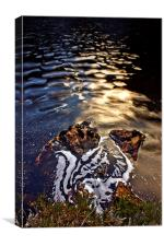 River Foam., Canvas Print