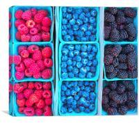 Farm Fresh Berries, Canvas Print