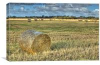 Hay at Harvest, Canvas Print