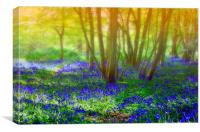 Dreaming of spring, Canvas Print