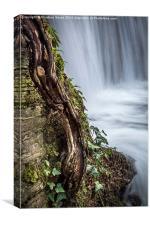 The Stepped Waterfall, Llanrwst, Canvas Print