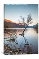 Sunset Reflections at Llyn Padarn, Canvas Print