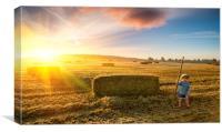 Harvest Sunrise, Canvas Print