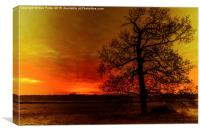 Fiery glow, Canvas Print