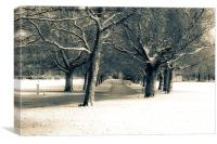 Winter at the Park, Canvas Print
