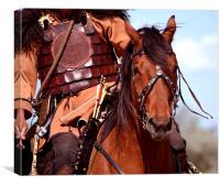 Warrior Horse, Canvas Print