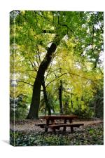 Picnic in the Woods, Canvas Print