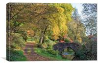 Autumn at Castle Hill Gardens, Canvas Print