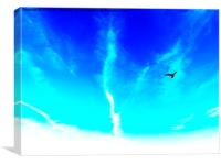 Bird In The Sky- Abstract Photography, Canvas Print