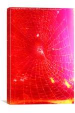 Scarlet Web- Unique Abstract Photgraphy, Canvas Print