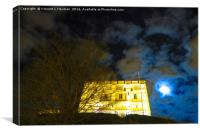 Norwich Castle Museum at Night, England, Canvas Print