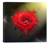 Electric Rose, Canvas Print