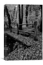 Wonderful Woodland, Canvas Print