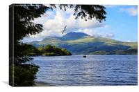 Ben Lomond from Luss , Canvas Print