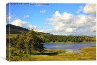Loch Tulla Trees , Canvas Print