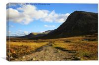 Road through the Glen , Canvas Print